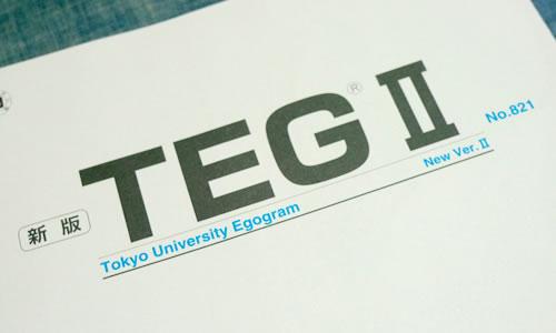 新版TEG II 東大式エゴグラム Ver.II