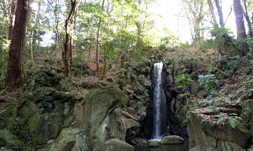 成田山公園の雄飛の滝